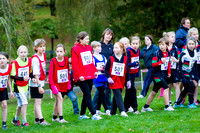 Cross Country Collett Park 6th November 2012